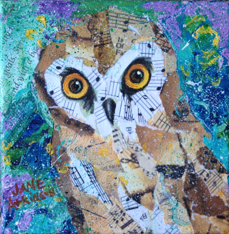 Northern Saw-Whet Owl done in mixed media